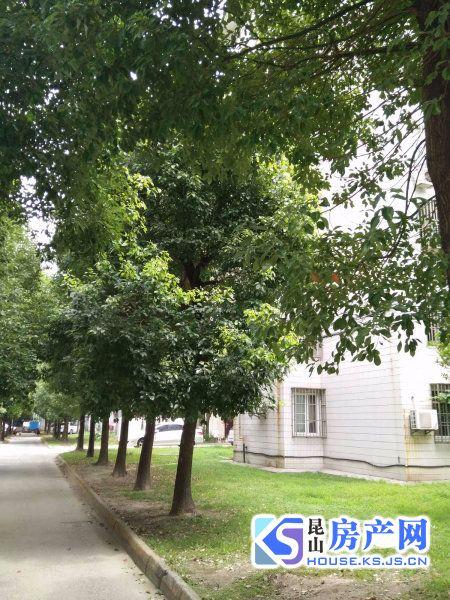 市政府边上 樾城花园 2房 低价出租 中间楼层 看房有钥匙