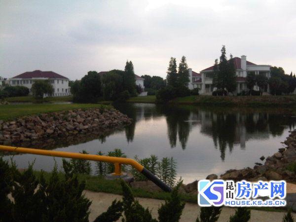 真实大上海别墅 378户型 占地大气 资金周转 出售 随时看房 急售临河独栋