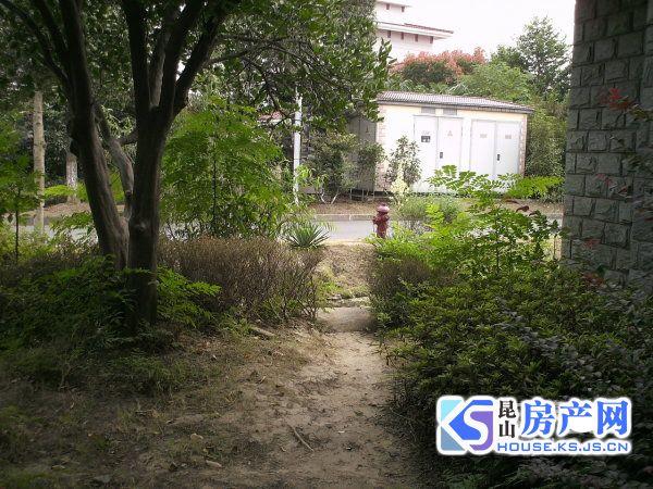 丰泽园独栋别墅占地700平方 多套别墅 278平方,320平方多套