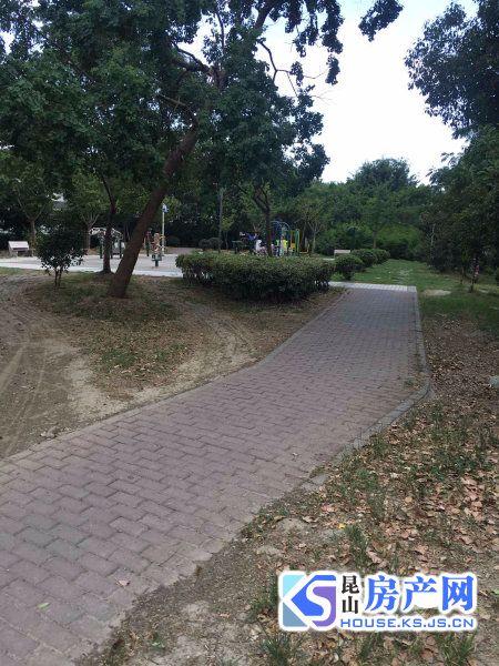 张浦中心位置 肯德基正对面 繁华地段 精装豪华大三房 当东急售 价格房源真实