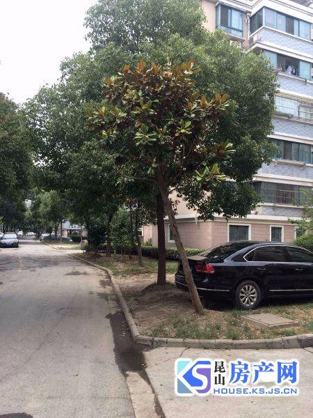 张浦镇中心银鹿新城93平简装,满2年省税,另送15平车库,买到就赚,需要的联系!