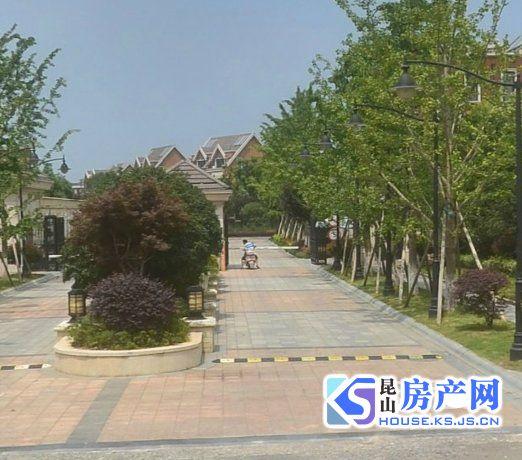 阳澄溢景苑双拼东边套 户型佳 送大露台 紧靠阳澄公园 视野好